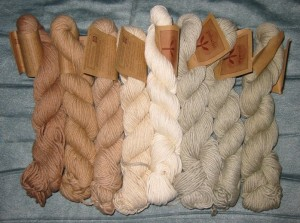Organic cotton yarn - Pachuko Organic Cotton