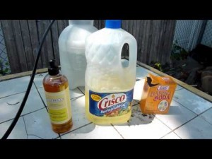Make Your Own Natural and Organic Pesticide and Fungicide